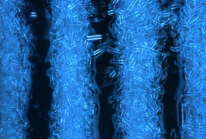 3dp_ultrasonic_zoom_of_microstructure-1000x675
